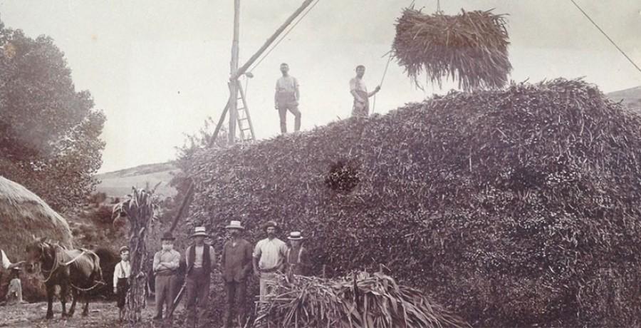 Thackwood_Farm_History